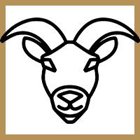 Capricorne Horoscope